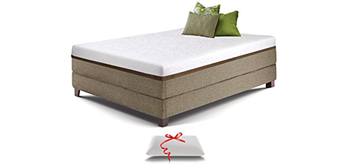 Live and Sleep Organic Resort Style Mattress - Organic Layered Foam Mattress for Back Pain
