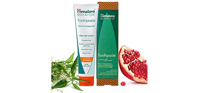 Himalaya Neem and Pomegranate - Organic Indian Herbal Toothpaste