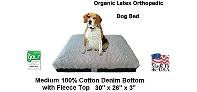 Back Support Systems Orthopedic Pet Bed - Pet Support Systems Organic Latex