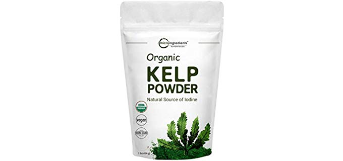 Micro Ingredients Ascophyllum Nodosum - Organic Kelp Powder