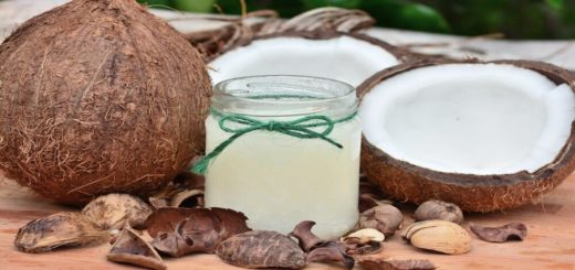 Best Organic coconut milk
