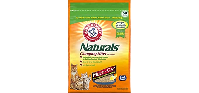 Arm & Hammer Natural - Clumping Cat Litter