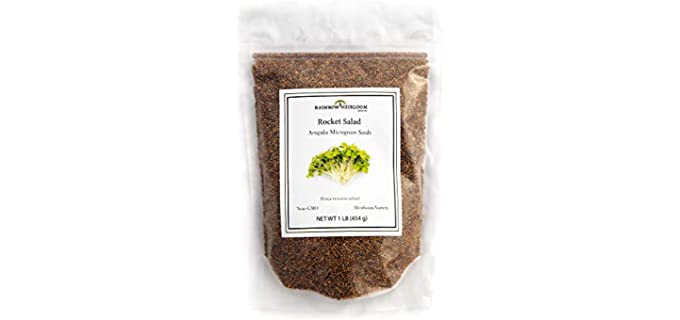 Rainbow Heirloom Seed Co. Spicey - Bulk Organic Arugula Sprouting Seeds
