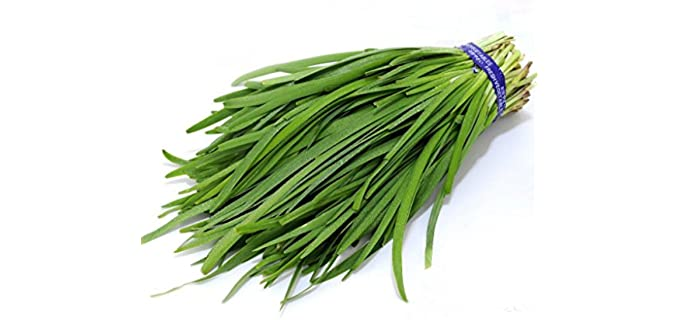 Futaba Chives - Organic Garlic Sprouting Seeds