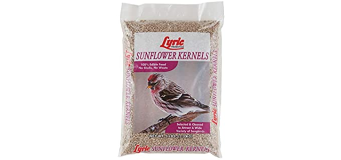 Lyric Store 2647445 - Sunflower Kernels