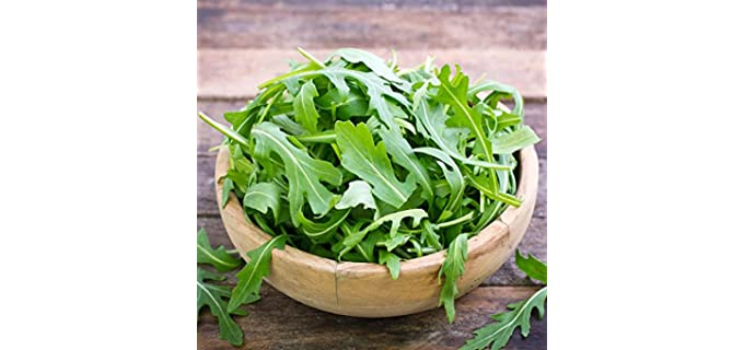 Mountain Valley Seed Baby Green - Organic Arugula Seeds