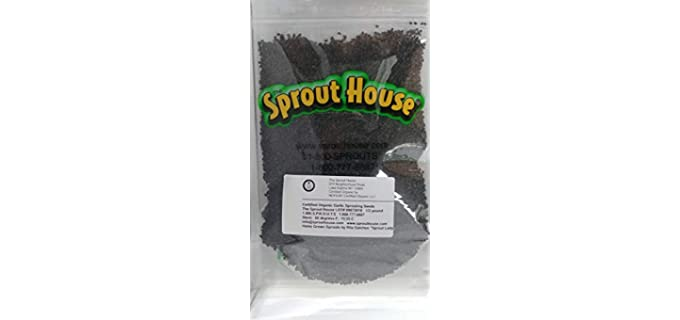 The Sprout House Non-GMO - Certified Organic Garlic Sprouting Seeds