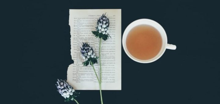 best organic tea brands