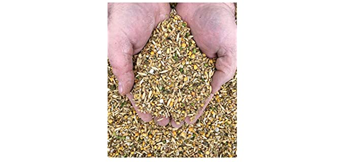 New Country Organics Layer - Organic Chicken Feed