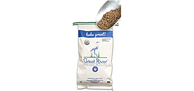 Great River Organic Milling Hard - Red Spring Wheat