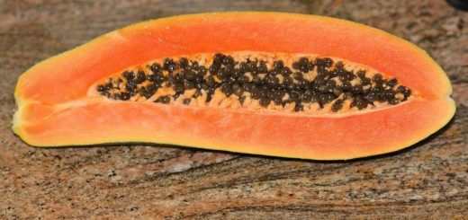 Organic Papaya Enzyme